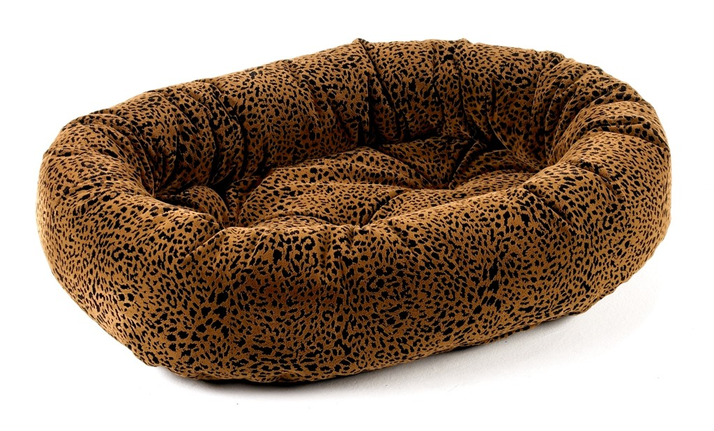 bed urban animal